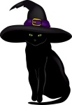 halloween_black_cat_wearing_a_witches_hat_ready_to_put_a_spell_on_you_0515-0909-1716-2448_SMU