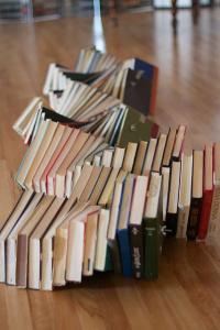 booksnake