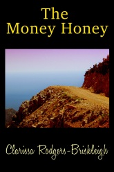 the money honey 800 x 1200